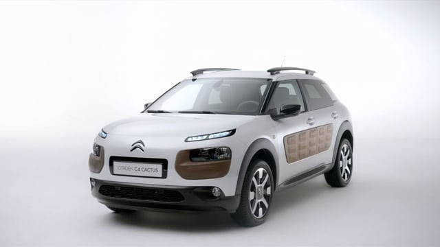 C4 Cactus directed by Paul Mignot